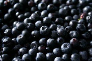 553860_berries.jpg