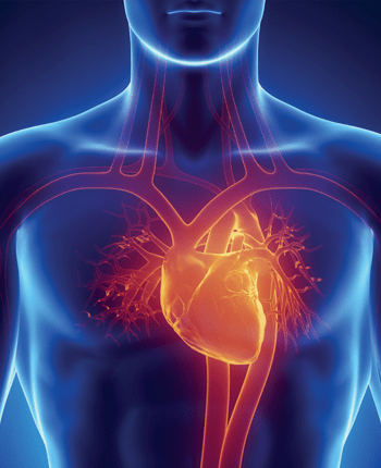 Healthy Heart Diet: Lower your Risk for Heart Disease