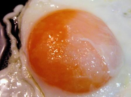 Little-Known Facts About Eggs You Should Know 1