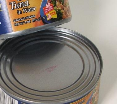 Fresh Fish vs. Canned Fish 2