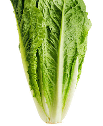 Why Romaine Lettuce Is Good For Your Heart