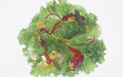 Modified Mediterranean Diet – Exploring the Many Health Benefits It Provides