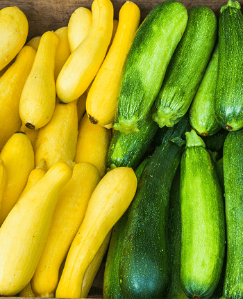Zucchini in the Mediterranean Diet – Exploring the Healthy Benefits It Can Give